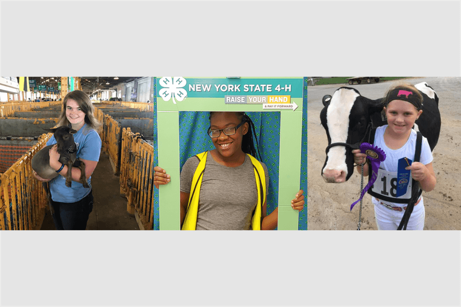 Goats, origami, virtual reality and more at the State Fair!