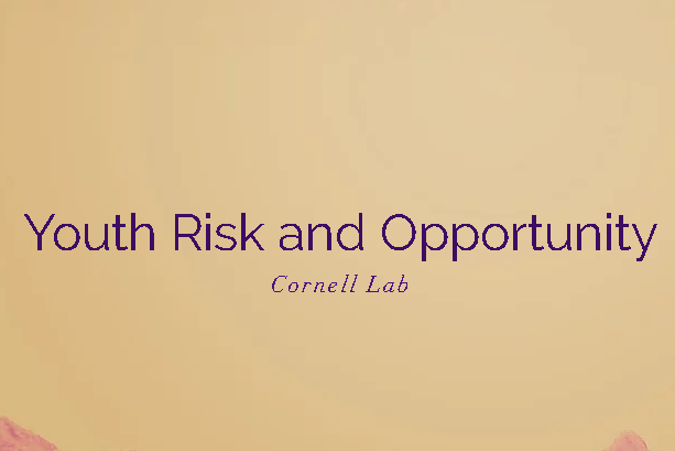 The new Youth Risk and Opportunity Lab